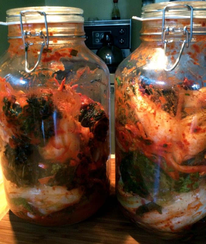 The prepared cabbage is sealed inside glass quart jars. We fermented one inside the fridge, and one outside.
